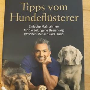 Tipps vom Hundeflüsterer - Cesar Milan